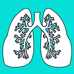 بیماری های ریه
