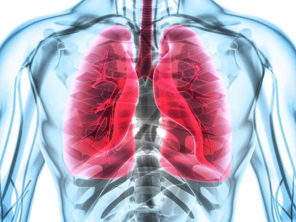 آشنایی با بیماری آسم و راه های پیشگیری و درمان آن